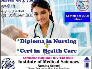Diploma in Nursing (3 Years)