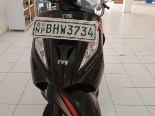 Wego bike