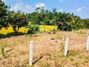 Land for sale in Urmpirai Jaffna