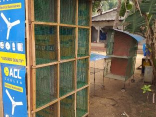 Pigeon box cage for sale – jaffna
